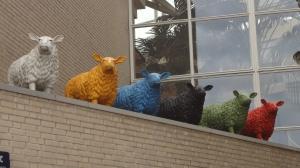 GSL Dordrechtjuni2014 012